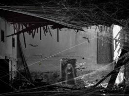 3 historias de terror para disfrutar este Día de Muertos